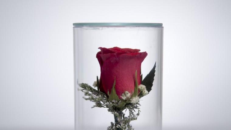 Get Your Wedding Memories Personalised