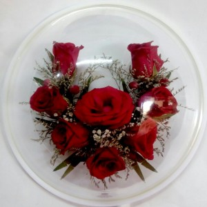 Seasons-Greetings-roses