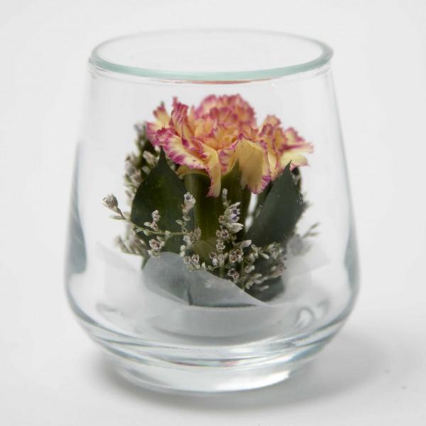 Cute-Carnation