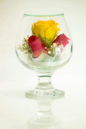 LF - Classic-Mixed Roses