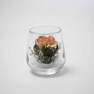 LF -Cute-Carnation
