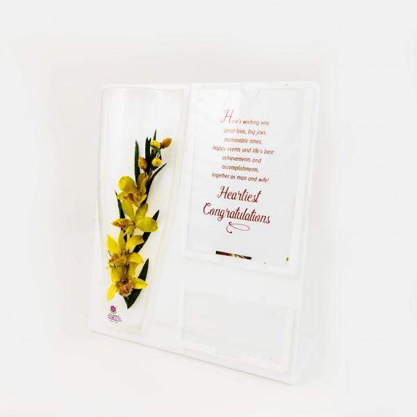 Bouquet-Orchid