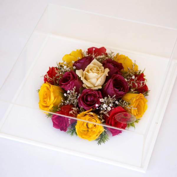 Vibrant – Rose Majestic