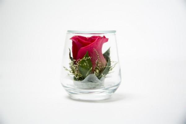 Cute-Red-Rose