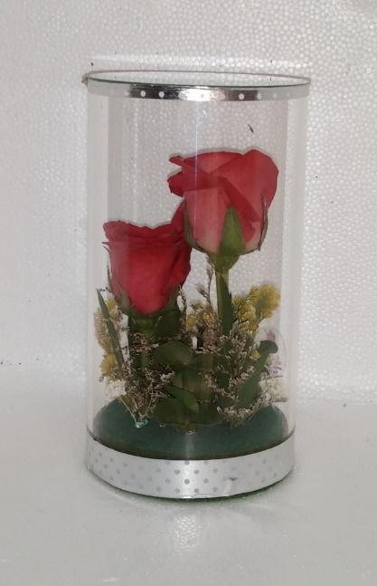 LF - Accent-Twin Rosa